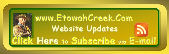 Subscribe for Email Updates for the entire Website